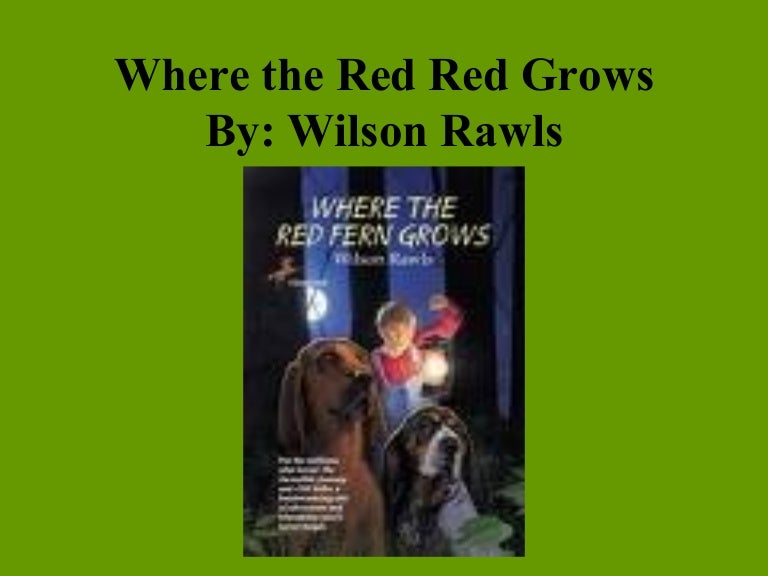 where the red fern grows billy character traits