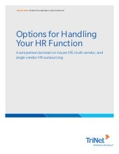 White paper  options for handling your hr function[1]