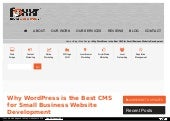 Why WordPress is the Best CMS for Small Business Website Development