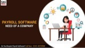 Why a Payroll Software is An Important Need For A Company?