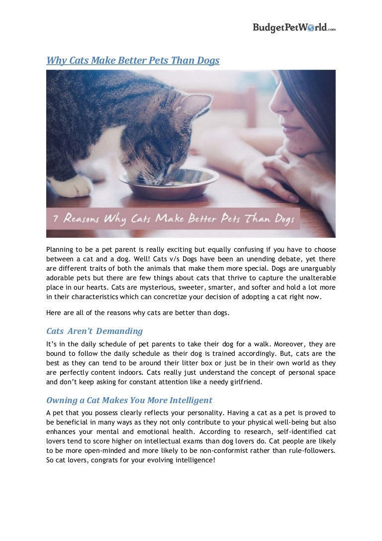 Why Cats Make Better Pets Than Dogs