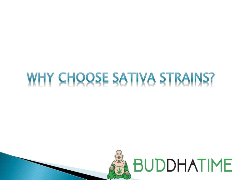 Why Choose Sativa Strains?