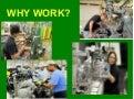 Why work