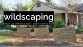 Wildscaping: break up with your lawn, invite in the wild