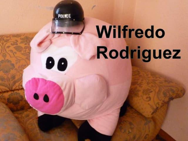 Wilfredo Rodríguez le cochon