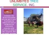 Storm Damage Tree Service Annapolis Maryland