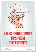 Sales Productivity Tips from the Experts