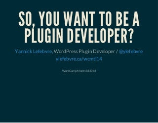 So, you want to be a plugin developer?