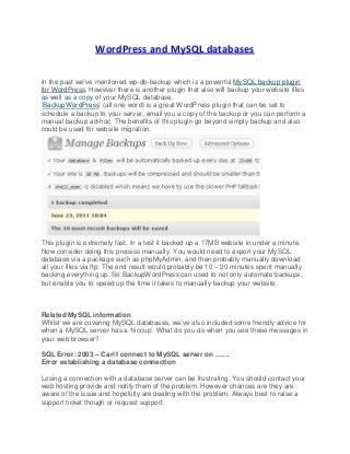 WordPress and MySQL databases
