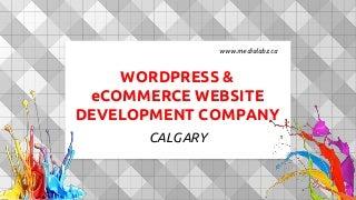 Calgary WordPress & e-commerce website development company