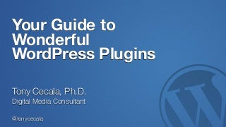 Your Guide to Wonderful WordPress Plugins