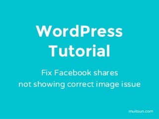 WordPress Tutorial - Fix Facebook Shares Not Showing Correct Image Issue