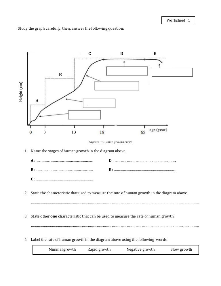 Worksheet 1Growth – Population Growth Worksheet