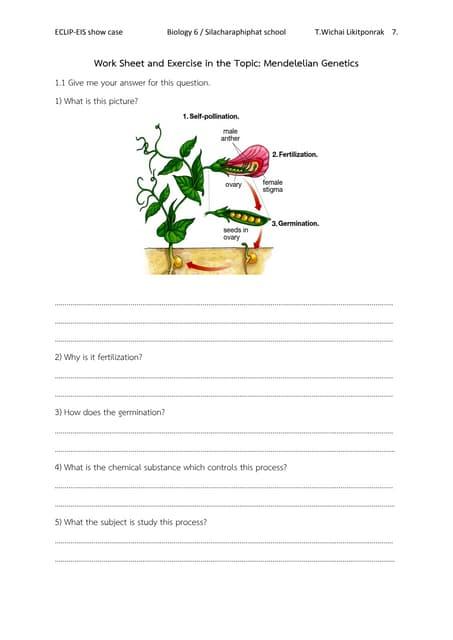 Worksheet biology M.6