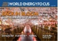 World Energy Focus - Maggio 2017