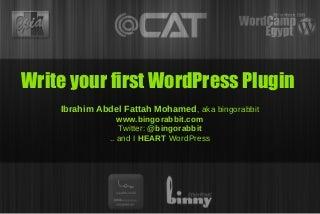 Write Your First WordPress Plugin
