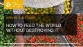 How to Feed the World Without Destroying It