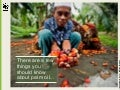 How Clean is Our Palm Oil?