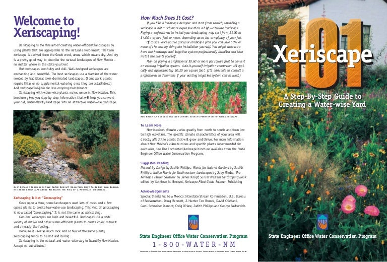 Xeriscape 101 A Step By Step Guide To Creating A Water Wise Landscape