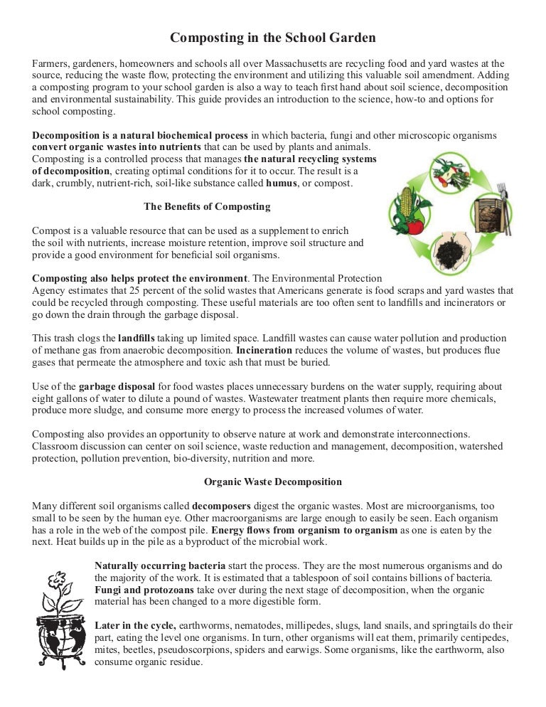 School Gardening Guide - Composting in the School Garden