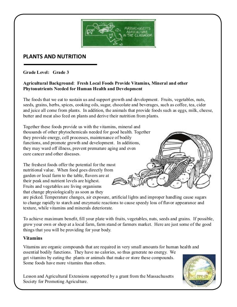 Grade 3 School Garden Lesson Plan Leaf Lesson Plants and Nutrition – Gardening Lesson Plans