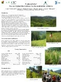 Poster32: YARA & PAYA Two new rice cultivars for the small-holders of Bolivia