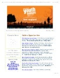 YV NE February 2010 Newsletter